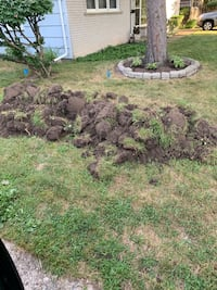 Dirt from yard (much more) Southfield, 48076