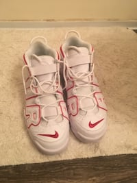 Nike Uptempo Knoxville