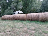 Fescue and rye hay rolls