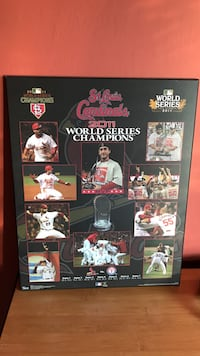 St. Louis Cardinals 2011 World Series Champions poster Ballwin, 63011