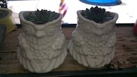 Two white owl succulent planters  New Westminster, V3L 4K7