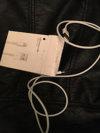 Apple lightning to USB cable 1 mt.