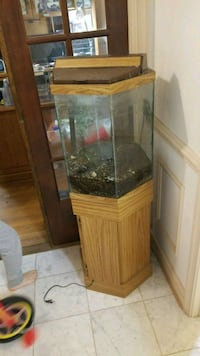 30 gallon hexagon tank with wooden stand McLean, 22102