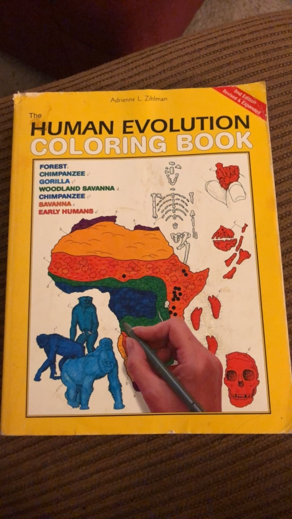 The Human Evolution Coloring Book, Adrienne Zihlman