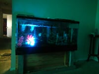 black framed glass pet fish tank District Heights, 20747