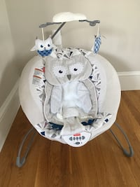 Fisher-Price Deluxe Baby Bouncer