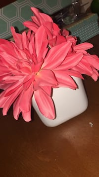 Fake coral flowers pot  Mississippi Mills, K0A 1A0