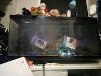 75 gallon tank everything included pump,trees, rocks, and lights Lexington, 40508