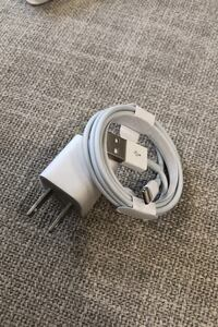 Apple Brand Lightning Cable and Block