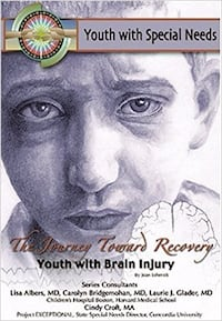 Youth with Special Needs The Journey Toward Recovery book