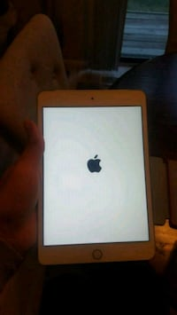IPad mini  Westminster, 80031