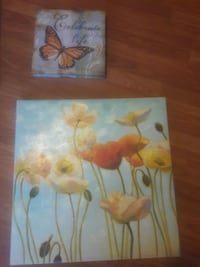 white and orange poppies frameless painting
