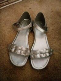 Silver shoes Knoxville, 37922
