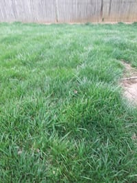 Professional Lawn mowing and Landscaping/ Hardscaping Charlotte