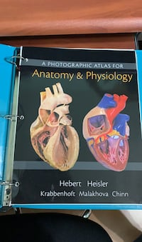 Anatomy & Physiology Photographic  Stafford, 77477