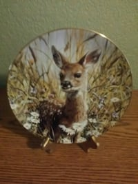 Our Woodland Friends - Whitetail Fawn 2319 mi