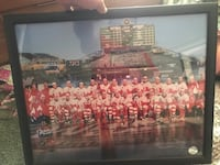 Winter classic  redwings 2009 poster Shelby Township, 48315