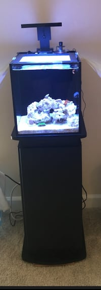 10G Nuvo Fusion Saltwater fish tank kit and beautiful stand, all ready to set up Arlington, 22201