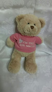 brown bear plush toy with red dress