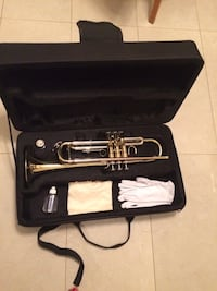 Gray stainless steel wind instrument with case Brampton, L6T 2R5