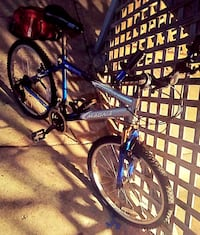 Blue and silver bike Chicago, 60620