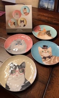 New in box, Pier 1 Party Cat Plates Warrenton, 20187