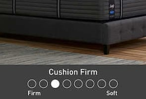 Sealy Queen Premium Cushion Firm Mattress