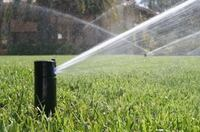 Sprinklers blow out specials! Brentwood