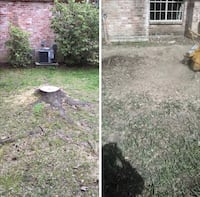 Stump removal,stump grimd(if you have more than 4 i can give you a good price,removemos troncos Houston, 77081