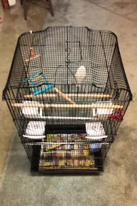 Large Bird Cage with accessories  Brampton, L6R 1Z8