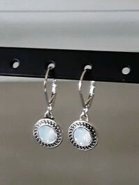 Napier leverback earrings...Perfect anywhere City of Manassas, 20109