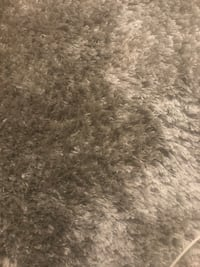 gray and white area rug Alexandria, 22306