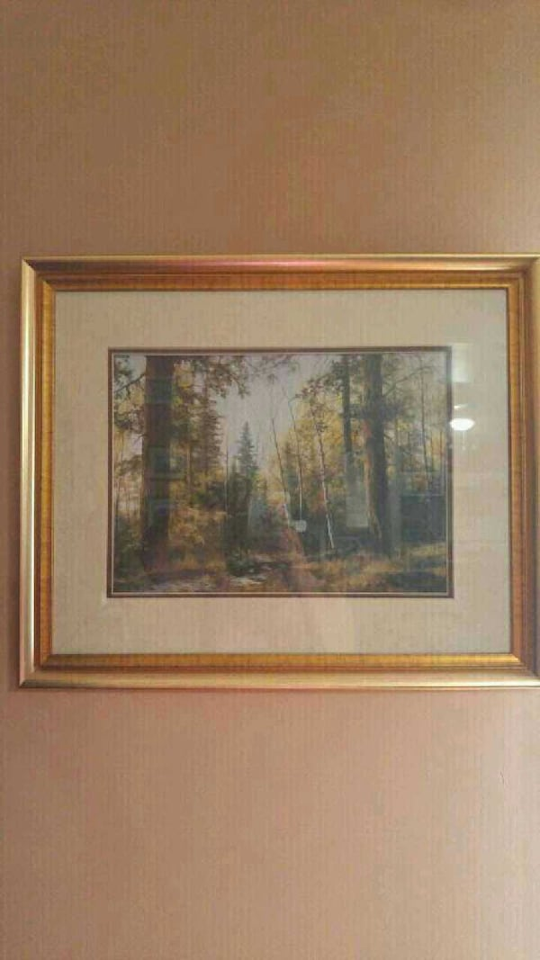 Beautifully framed picture of trees c1347200-0a6a-4b6e-87ca-827b35d0fe91
