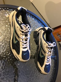 pair of white-and-blue Nike running shoes 1960 km
