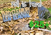 Leaf Removal/Cleanup Washington
