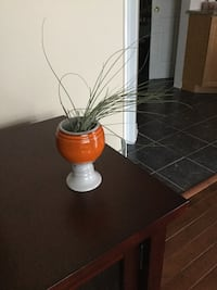 AirPlant and pottery plant holder / 5 in h x 3 in diameter Ottawa, K2G 6V6