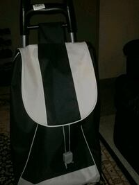 Shopping bag  Waterloo, N2L 2W6