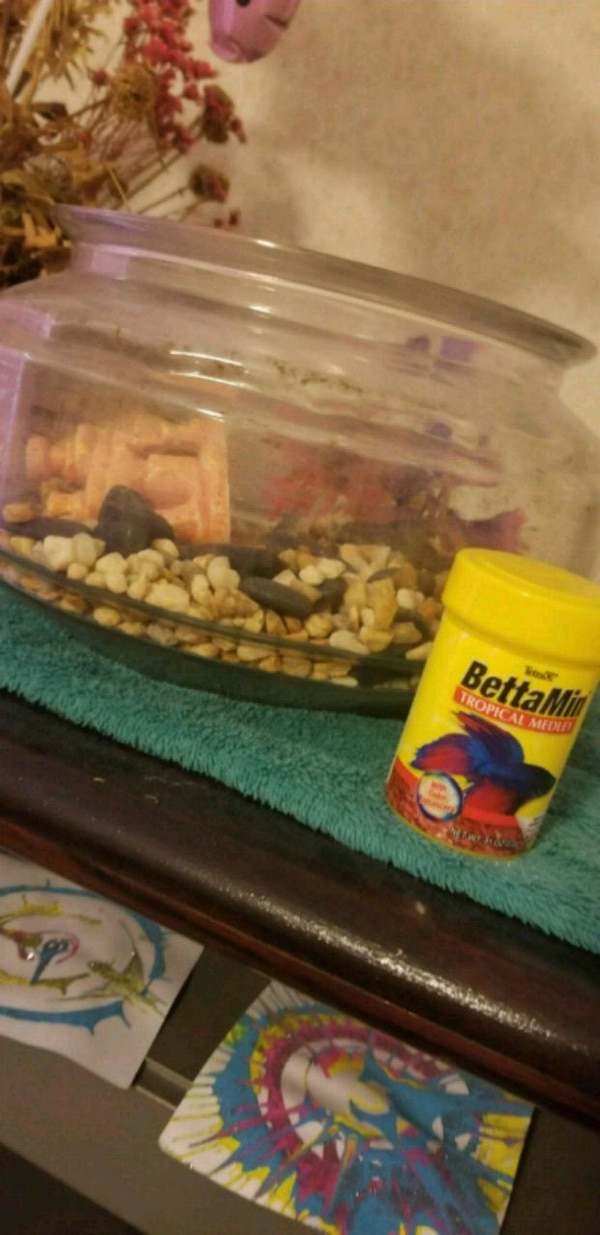 beta fish bowl, accessories, and some food.