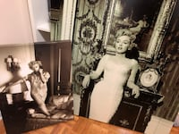 Marilyn Monroe Canvas Pictures  527 km