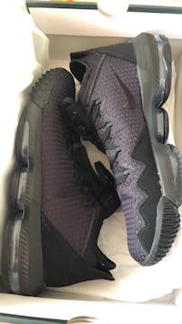 LeBron 16 Laurel
