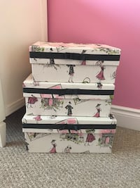 Paris theme storage boxes Hamilton, L9C 0C7