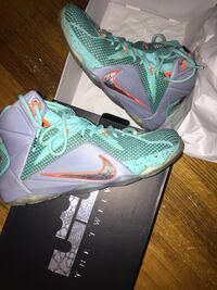LEBRON XII basketball ball shoes Calgary, T2V 2P3