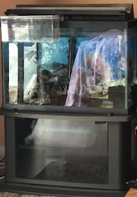20 gallon fish tank with stand (Moving Sell ) Richmond, V7A 3B5