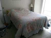 Bed and box spring for sale Boston, 02114