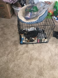 black metal folding dog crate Temple Hills, 20748
