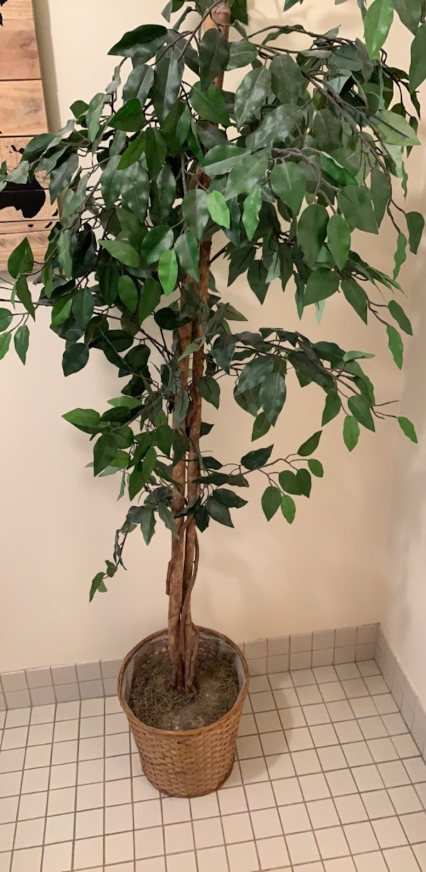 Decorative fake tree ff795eb1-4711-42e5-af4d-343195151821