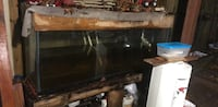 150 gallon fish tank 20 mi