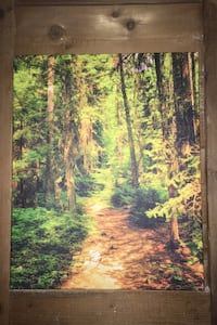 Trail Canvas over frame. 20x16 inches. Norfolk, 23503