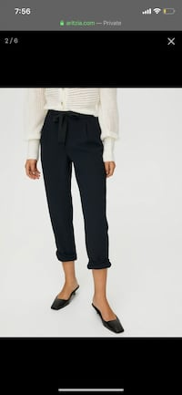 Wilfred Aritzia Allant pant