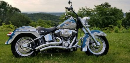 Low mileage 2005 Harley w/Custom, Numbered Paint